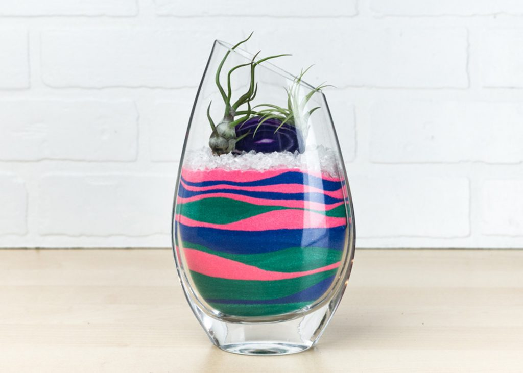 sand airplant kit